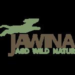 Jawina про нашу участь на виставці IWA OutdoorClassics 2019